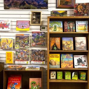 Southwestern Children's Books at Tintype Mercantile at Cat Mountain Station